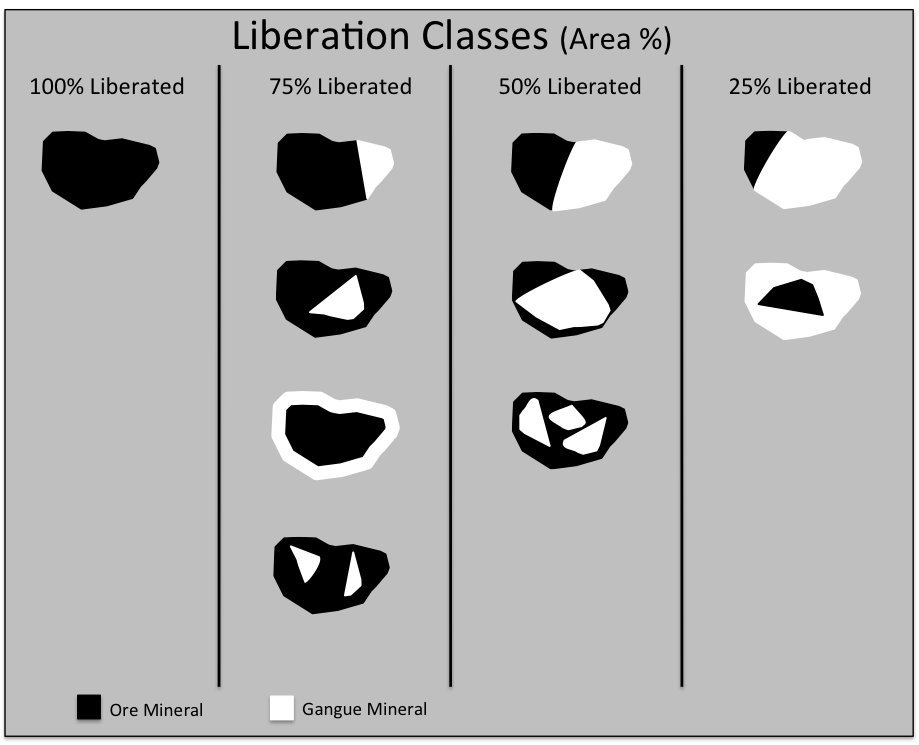Particles classified by ore mineral liberation at 100%, 75%, 50% and 25% by area