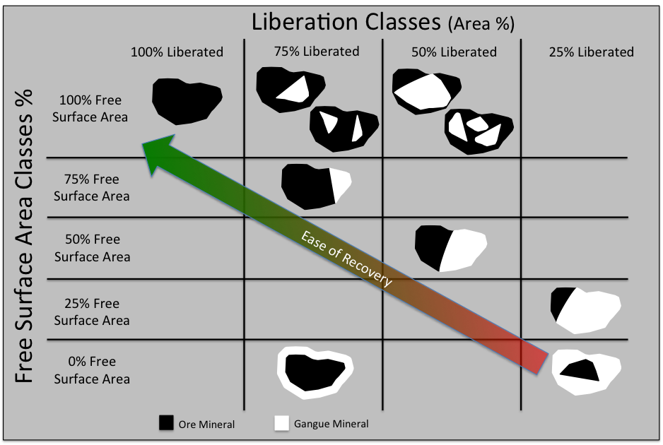 Particles classified by liberation and free surface area.